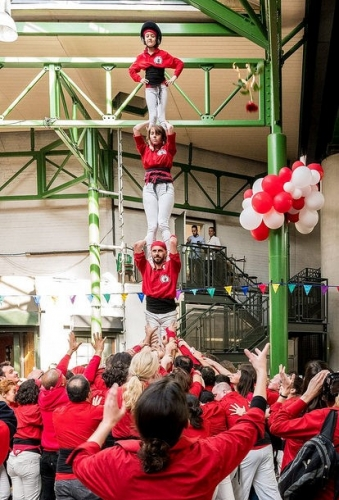 Sant Jordi 2017 - Pillar